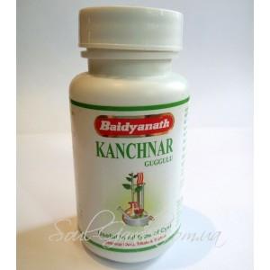 Канчнар Гуггул / Kanchnar Guggulu - здоровье лимфатической системы(BAIDYANATH) 80 табл.