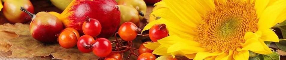 Продукция для здоровья и витамины